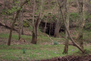 Winters Cave on Wessyngton
