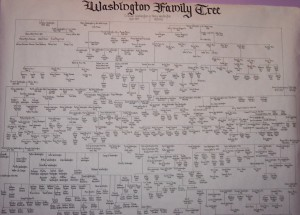 Washington Family Tree